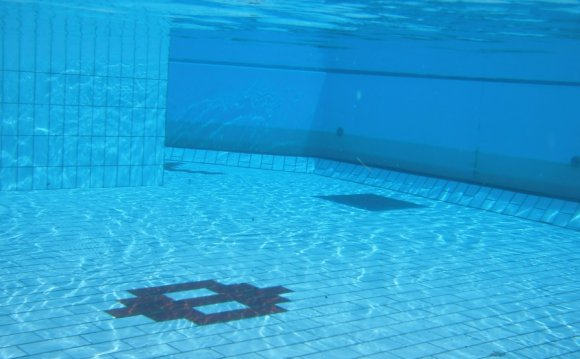 The Best Robotic Pool Cleaners